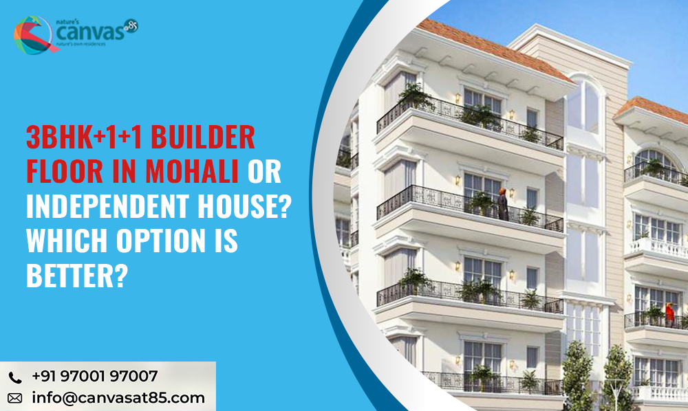 3BHK+1+1 Builder Floor in Mohali or Independent House? Which Option is Better?